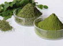 daun kelor untuk menurunkan berat badan