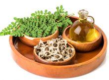 minyak organik kelor