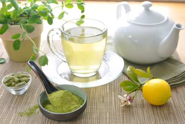 manfaat kesehatan teh kelor