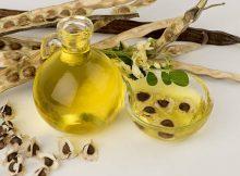 minyak esensial kelor